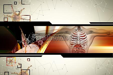 menschliche anatomie mit virus