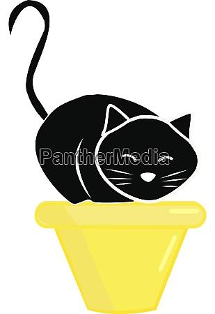 black cat illustration vector on white