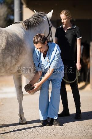 weibliche jockey blick auf tierarzt untersuchung