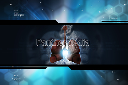 Medien-Nr. 27576801