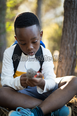 junge untersucht tannenzapfen im wald