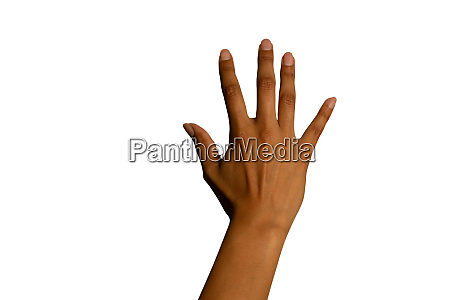 back of the hand of a