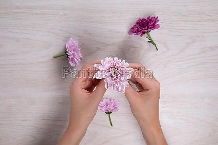 woman holding a little pink flower