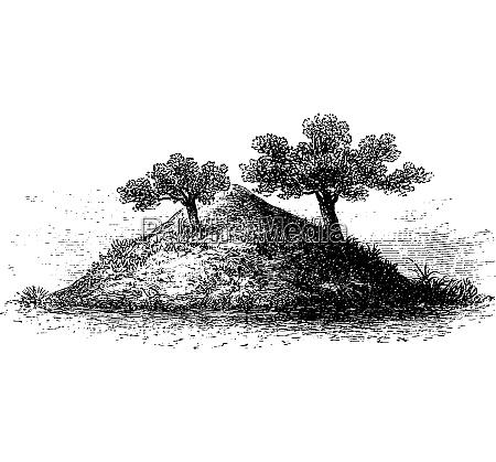 termite mound im suedlichen afrika vintage