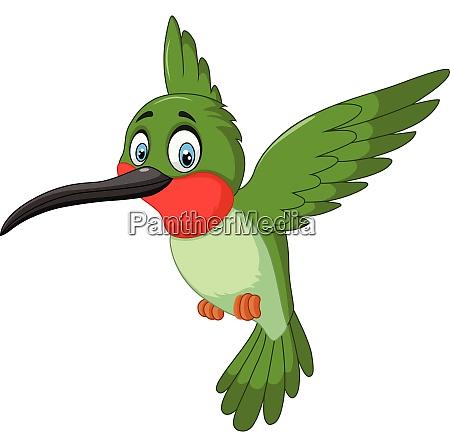 cartoon lustige kolibri fliegen isoliert auf