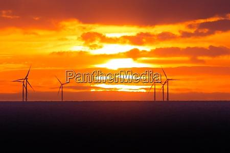 sonnenuntergang an windkraftanlagen windmuehlen offshore clean