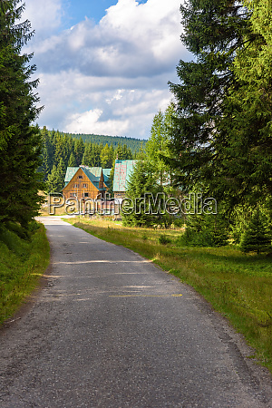 forest road to orle shelter in