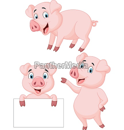 schwein cartoon sammlung