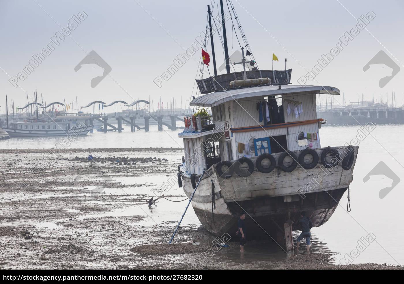 vietnam, halong, city, bai, chay, hafen, halong, bay, touristenboote, morgen - 27682320
