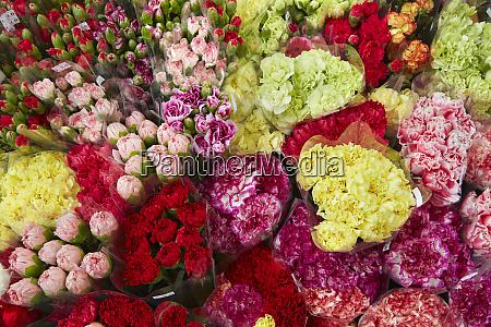 cut flowers at hong kong flower