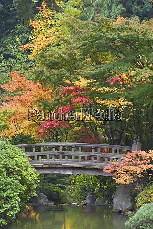 usa oregon portland wooden bridge over