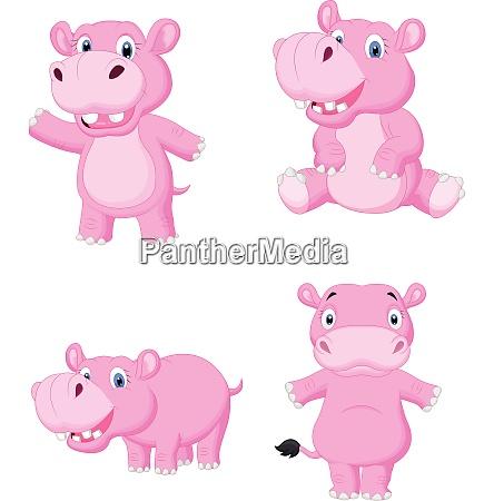 cartoon hippo sammlung set