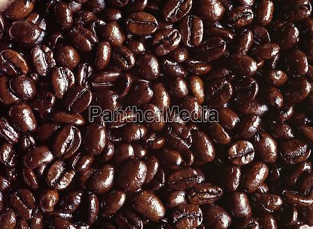 usa oregon bend dark brown coffee