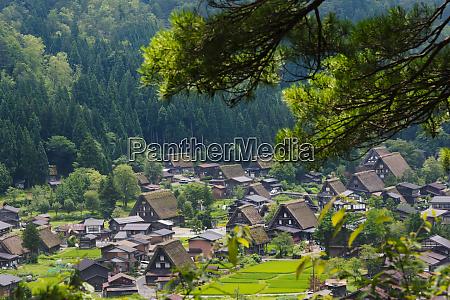 gassho zukuri houses and farmland in