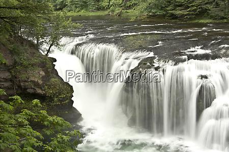 lower lewis falls lewis river gifford