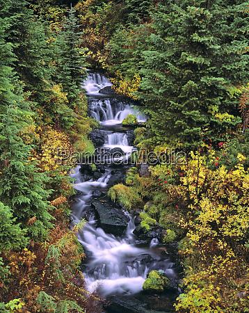 usa washington state mt adams wilderness