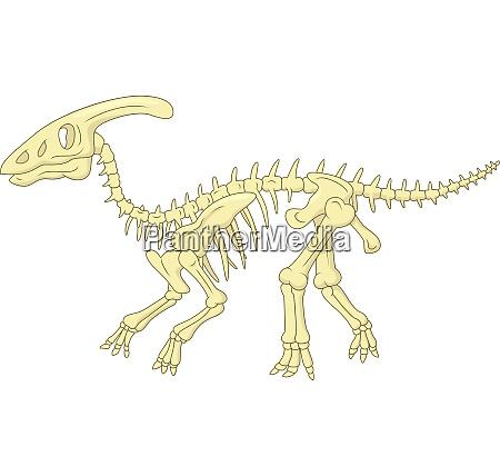 parasaurolophus skelett