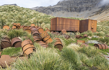 ruinen der walfangstation gothul in suedgeorgien