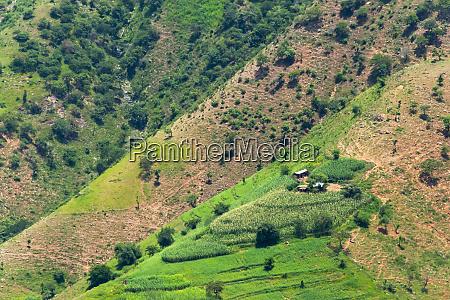 village house and farmland on mountain