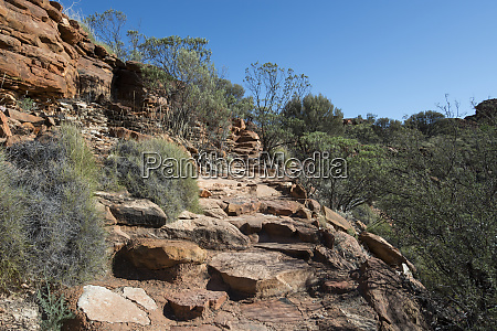 australien watarrka nationalpark kings canyon rim