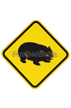 wombat warning sign australia