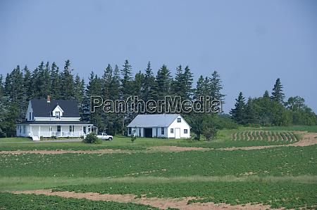 kanada prince edward island typische aussicht