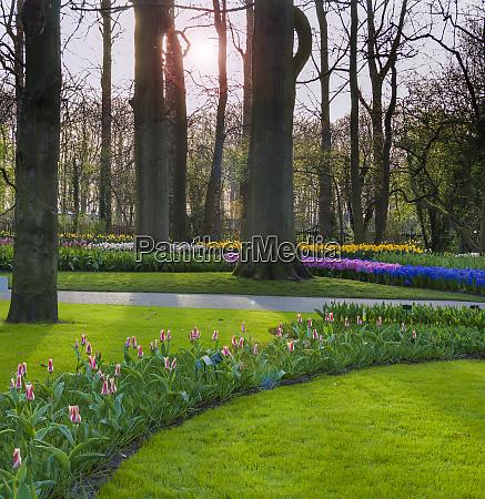 europa niederlande holland