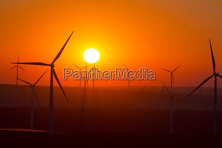 usa washington walla walla county windmills