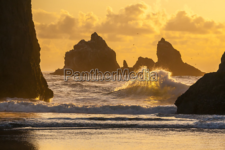 usa oregon bandon shore scenic credit