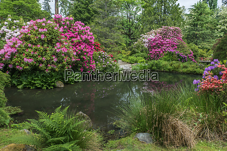 usa washington state seattle kubota garden
