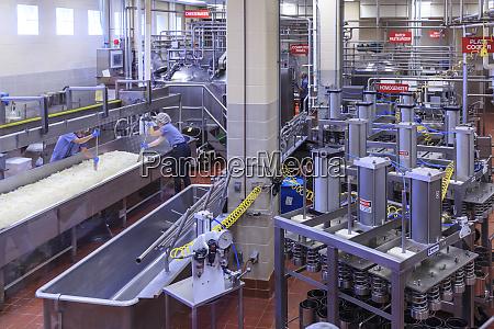 washington state university creamery producer of