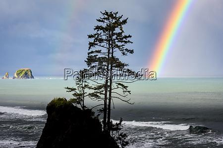 usa washington state olympic peninsula rainbow