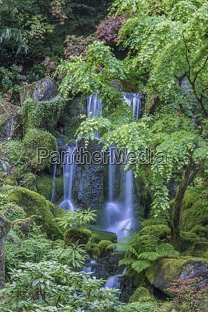 usa oregon portland portland japanese garden