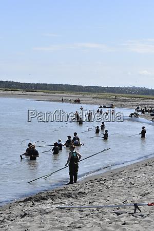 usa alaska kasilof river dip netting