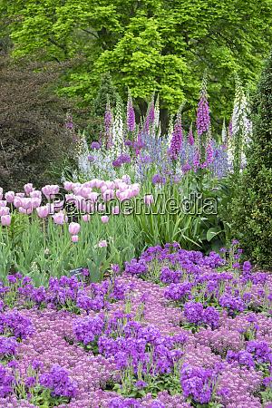 longwood gardens fruehlingsblumen kennett square pennsylvania