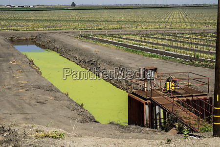usa california stockton agricultural irrigation at