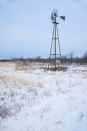 schnee, auf, der, prärie - 27831268