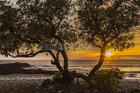 usa hawaii wawaloli beach park ocean