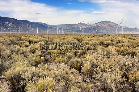 usa nevada wind turbines in spring