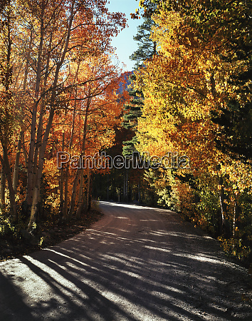 usa california sierra nevada mountains autumn
