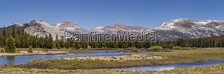 usa california tuolumne meadows yosemite national