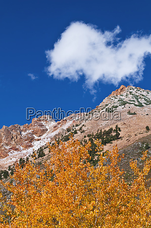 fall color and early snow above