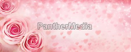 rosa valentinstag hintergrund