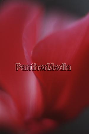Medien-Nr. 27872012