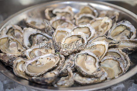 asnelle, bay, oysters, cabourg, normandie, frankreich - 27885262