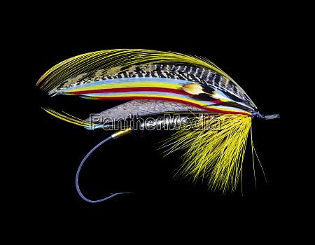 atlantic, salmon, fly, designs - 27887994