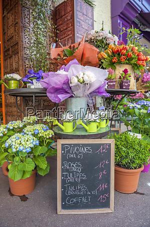 florist shop cabourg normandy france
