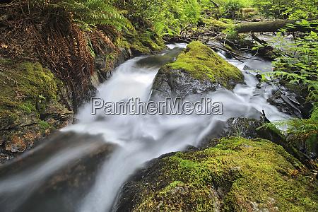 canada british columbia stream in cliff