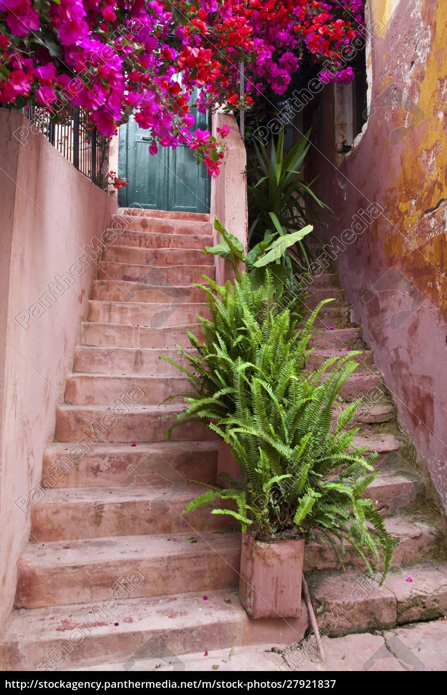 griechenland, kreta, chania., mit, pflanzen, verzierte, treppe - 27921837