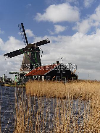 netherlands zaandam scenes from zaanse schans